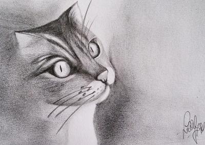disegno a matita da fotografia
