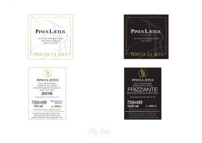 disegno etichette vini spumante
